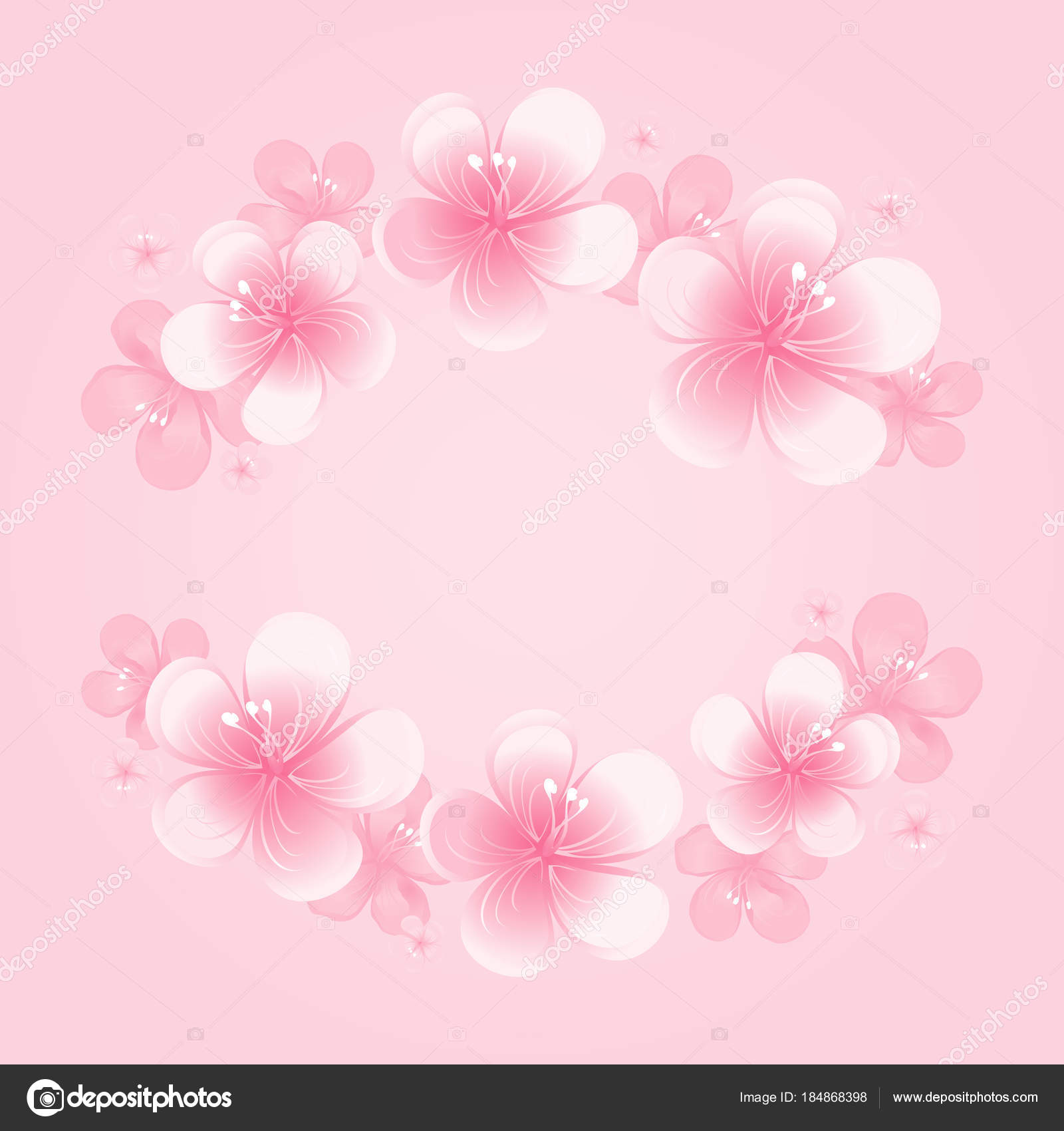Light Pink Flowers Frame Isolated Pink Background Apple Tree Flowers U2014  Stock Vector