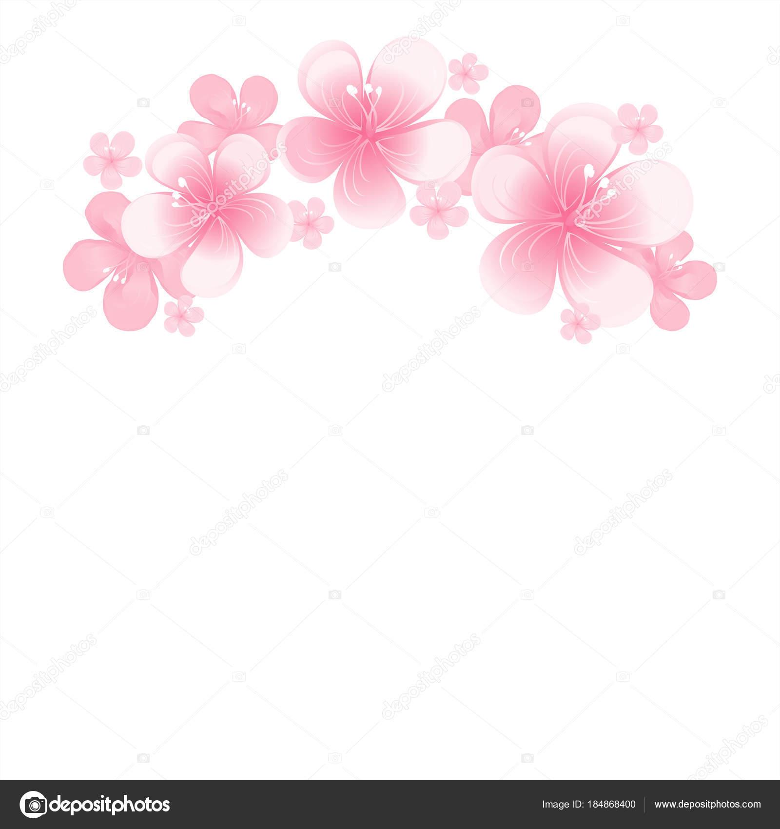 Fondo Blanco Flores Rosas Luz Flores Rosa Aisladas Sobre Fondo