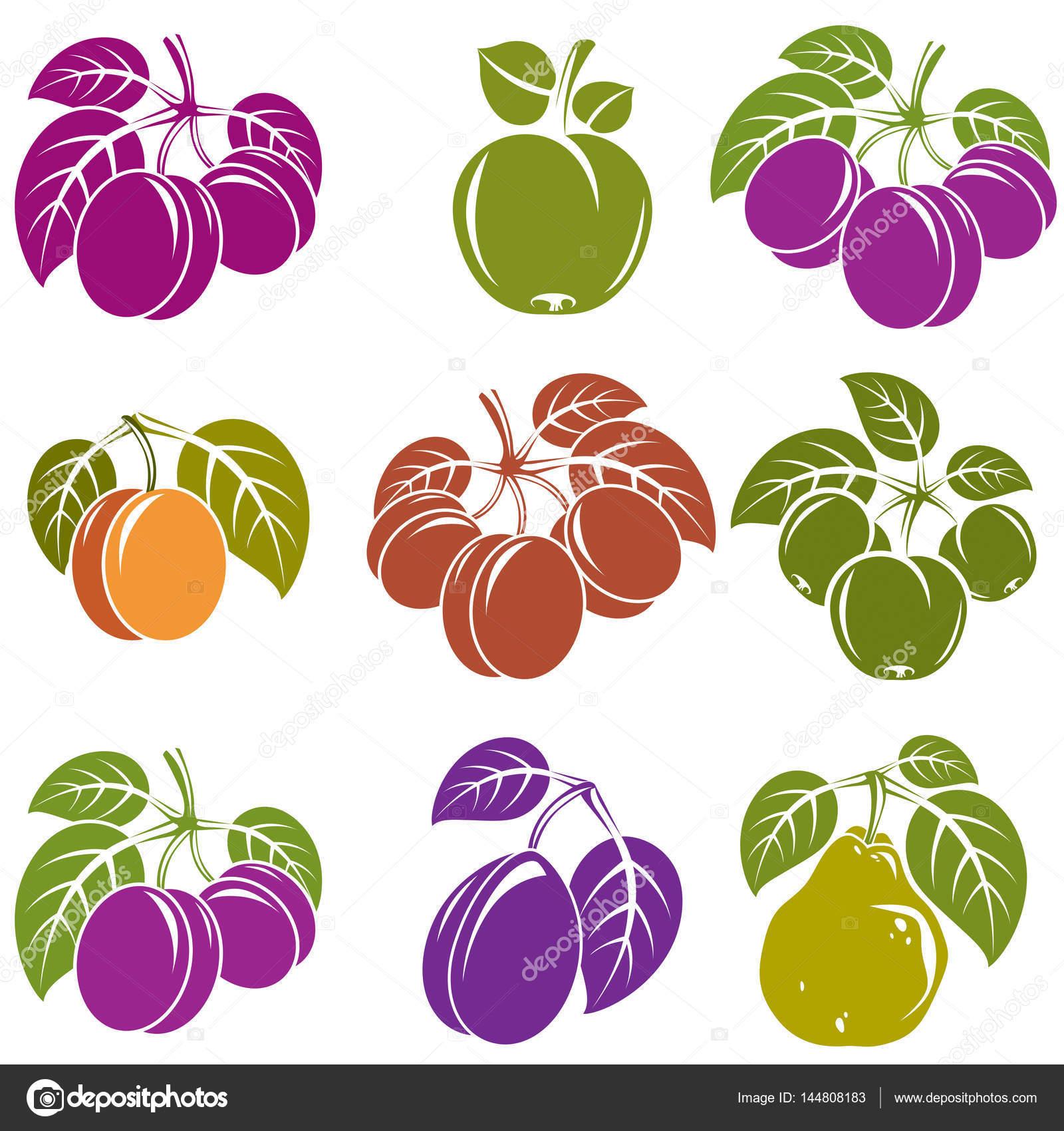 簡単な果物アイコン集 ストックベクター Ostapius 144808183