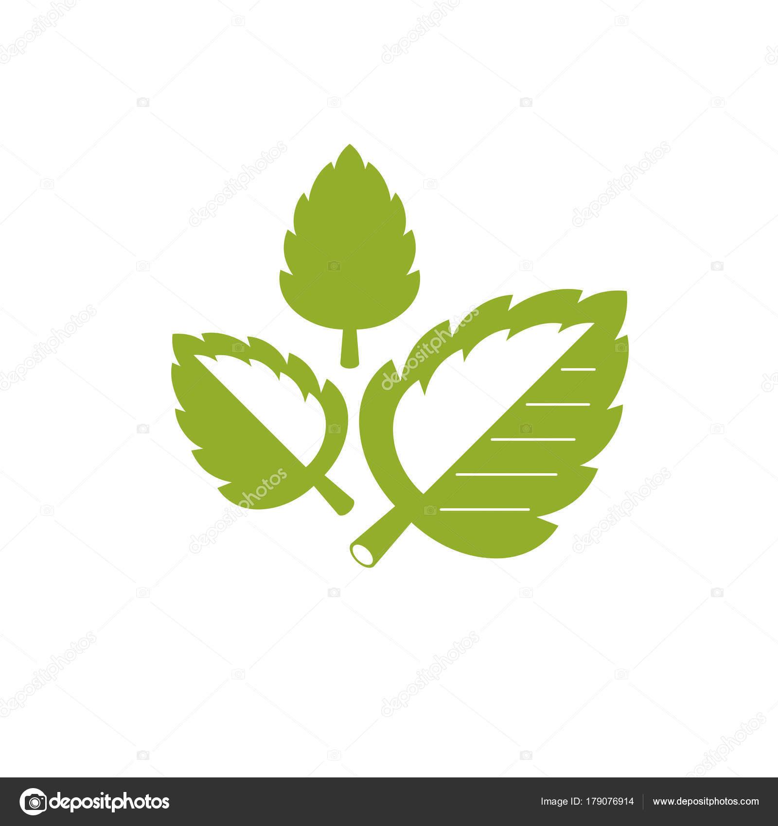 Simple Ilustración Gráfica Hojas Color Verde Metáfora Fitoterapia ...
