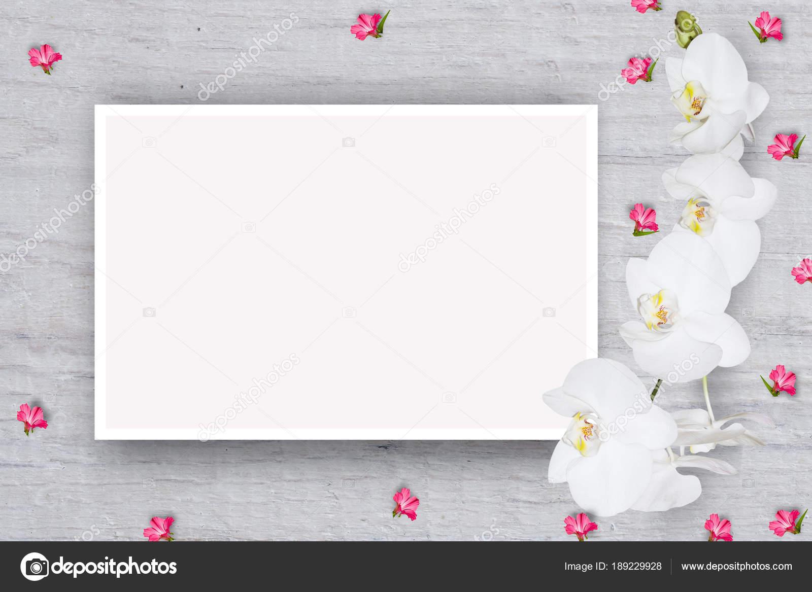 Patron Floral Abstracto Flores Pequenas Cartulina Con Una Hoja Papel