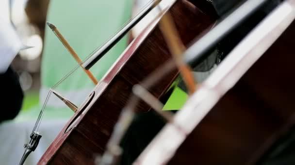 zwei Musiker am Violoncello. Nahaufnahme.
