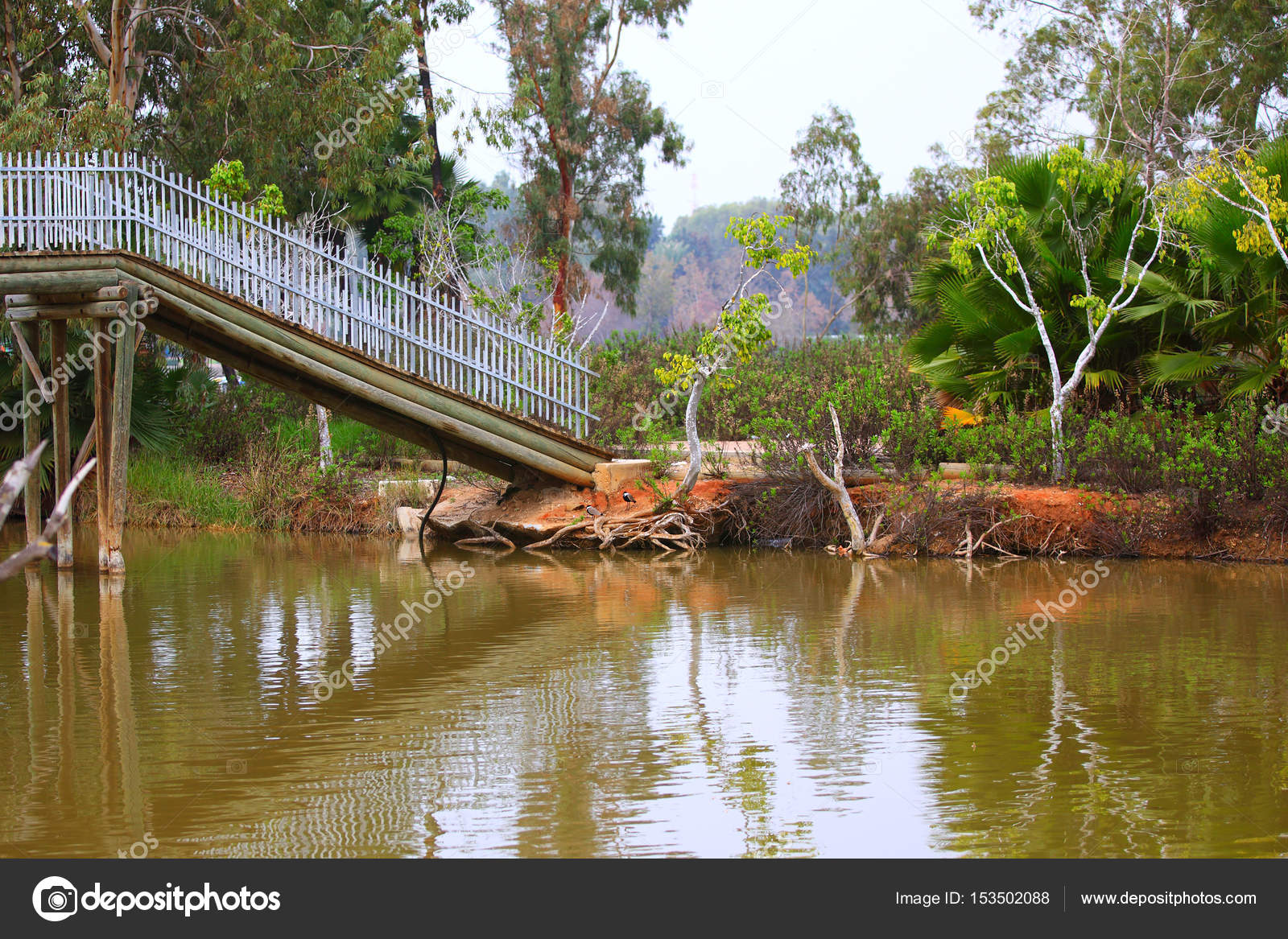 wooden footbridge over a pond in city park stock photo leonidp