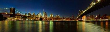 Manhattan and Brooklyn Bridges from Brooklyn