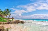 Fotografia Spiaggia di Sandy tropicale sul mare caraibico. Yucatan, Messico