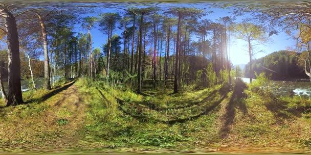 UHD 4k 360 Vr virtuální realita krásné slunné horské krajiny, lesní