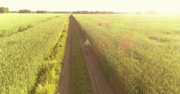 Letecký pohled na mladého chlapce, který jede na kole přes pšeničné trávníkové pole na staré venkovské silnici. Sluneční světlo a paprsky.