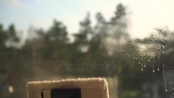 ruční čištění oken s vysavačem