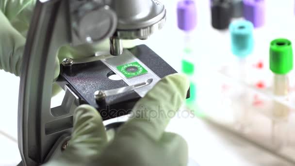 miscroscope laboratóriumban dolgozó tudós