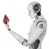 Robota hospodářství srdce