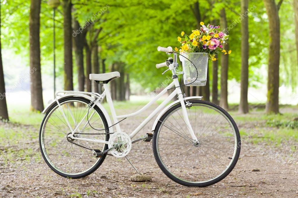 vintage bicycle with flowers in basket at the park