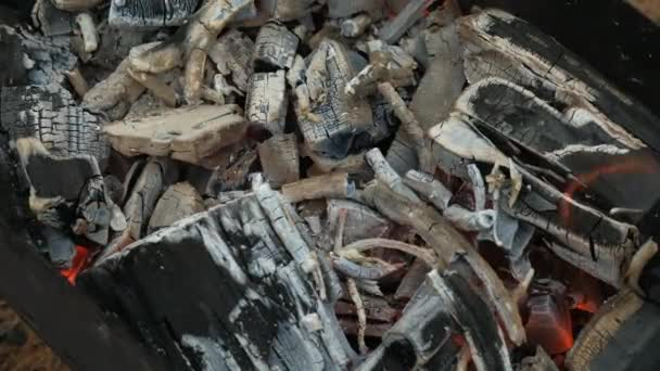 Uhlí hořící v grilu, zblízka. Příprava uhlí na pražení shish kebabu