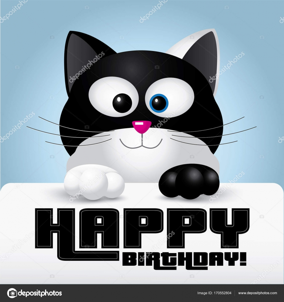 Happy Birthday Greeting Card Held By A Cute Black And White Cat
