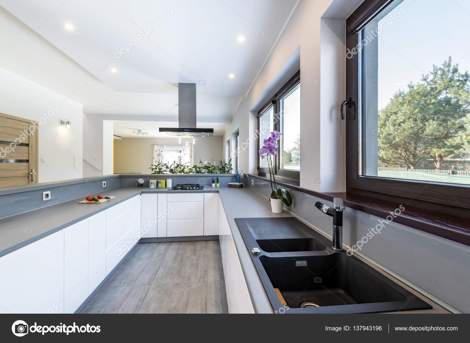 Interieur van de moderne keuken met roestvrijstalen apparaten