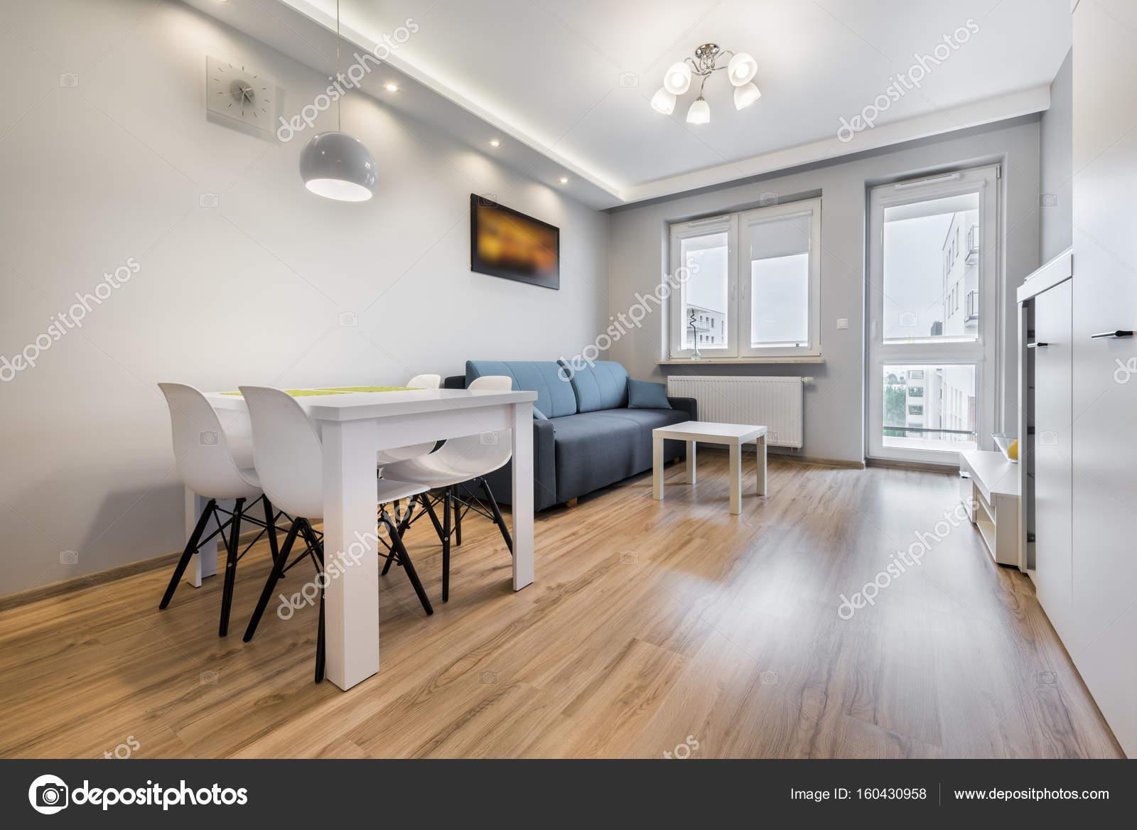 Moderne woonkamer met grijze wanden — Stockfoto © jacek_kadaj #160430958