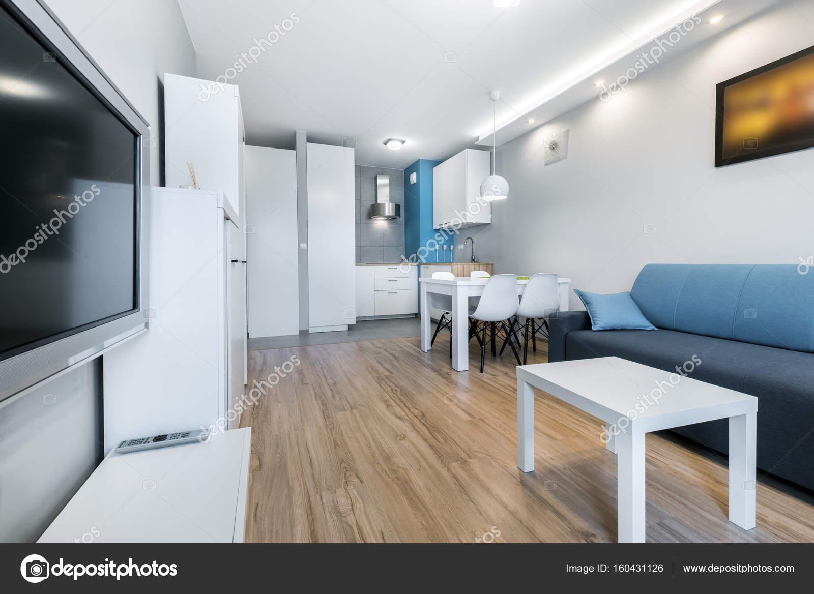 Moderne woonkamer met grijze wanden — Stockfoto © jacek_kadaj #160431126