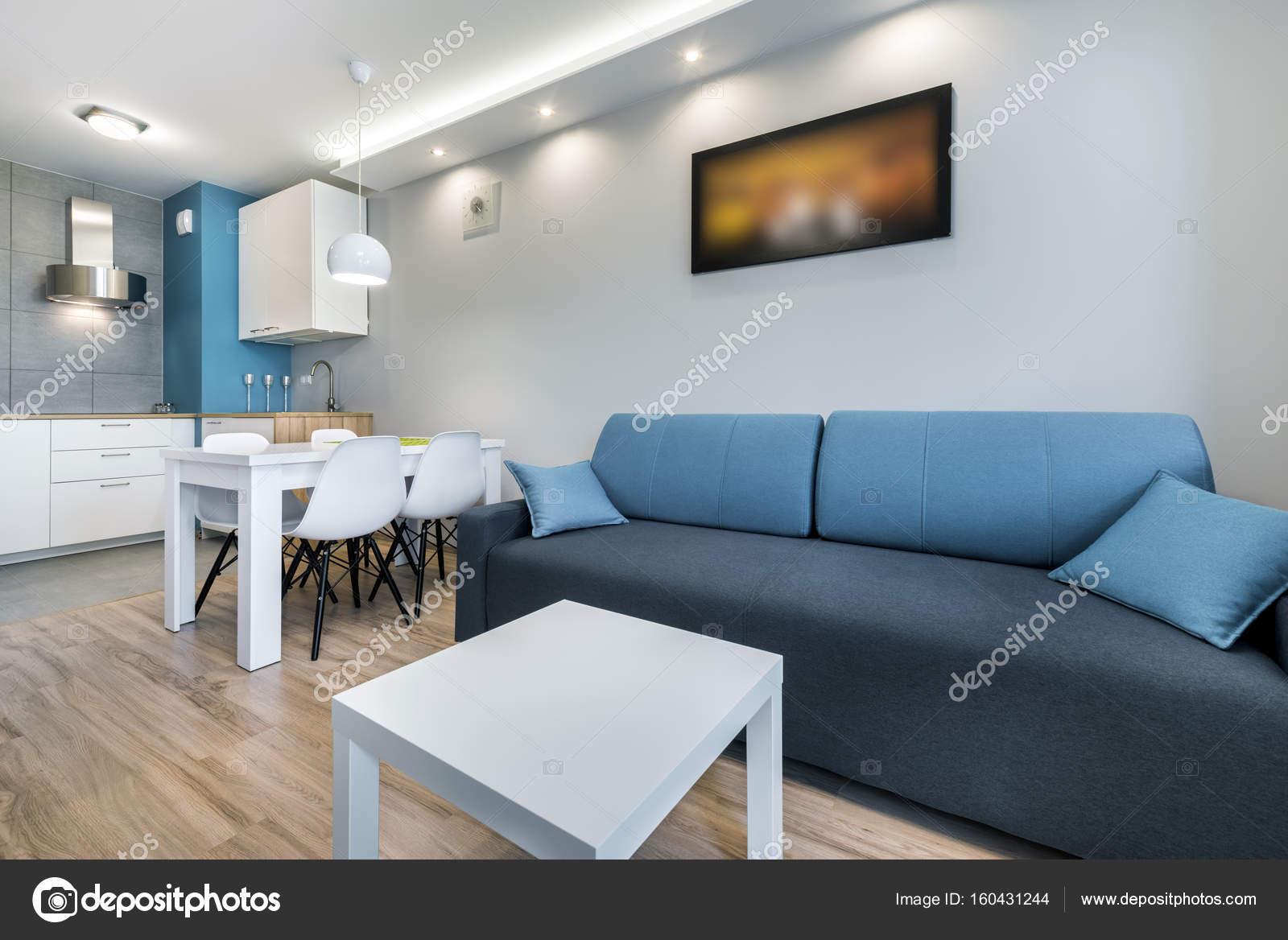 Moderne woonkamer met grijze wanden — Stockfoto © jacek_kadaj #160431244