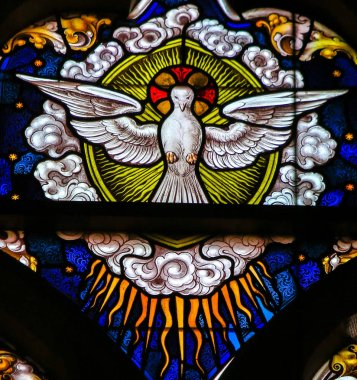 Stained Glass - Dove, Holy Spirit