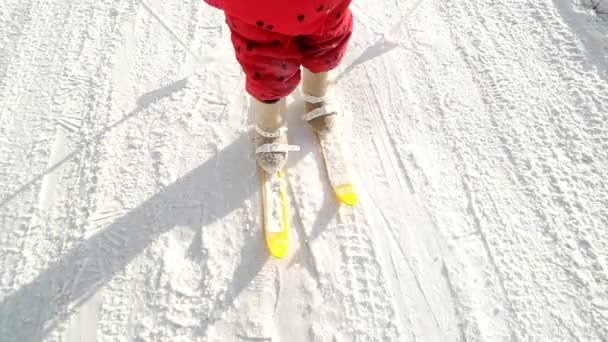 Little Girl and Boy Cross Country Skiing