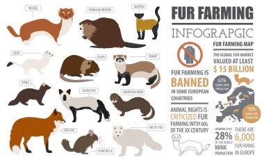 Fur farming infographic template. Flat design