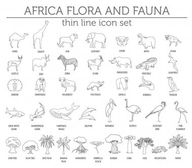Thin line Africa flora and fauna elements. Animals, birds and se