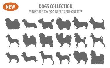 Miniature toy dog breeds, set icon isolated on white . Flat styl
