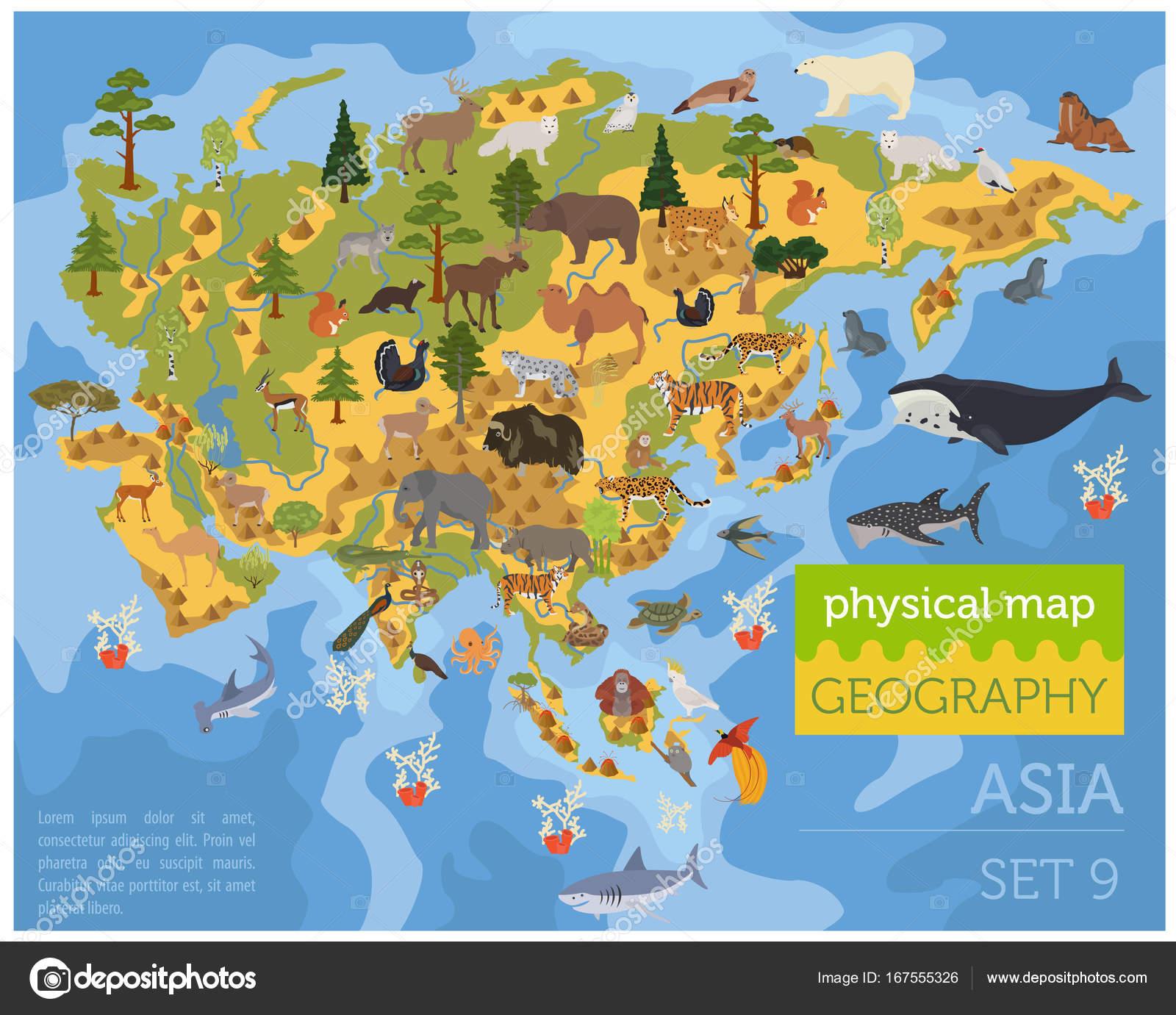 asijské velké ptáky