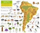 Fotografie Südamerika-Flora und Fauna Karte, flache Elemente. Tiere, Vögel