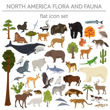North America flora and fauna flat elements. Animals, birds and