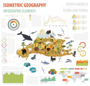 Isometric 3d North America flora and fauna map elements. Animals