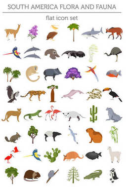 South America flora and fauna flat elements. Animals, birds and