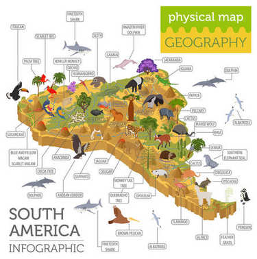Isometric 3d South America flora and fauna map elements. Animals