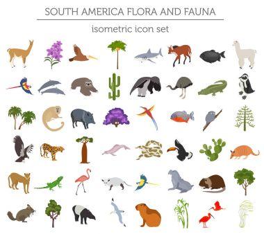 Isometric 3d South America flora and fauna elements. Animals, bi