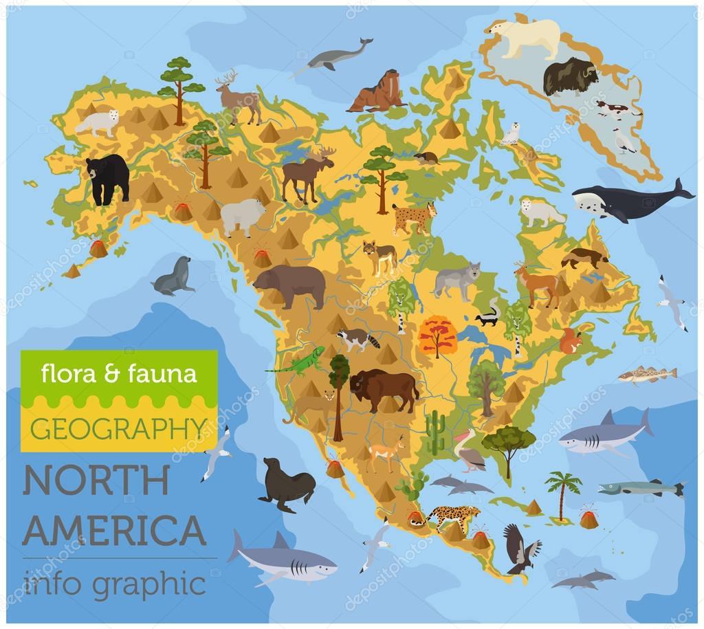 Nordamerika Tiere