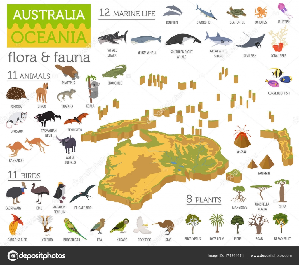 Isometric 3d Australia and Oceania flora and fauna map ...