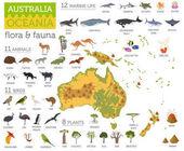 Austrálie a Oceánie flóru a faunu mapování, ploché prvky. Zvíře