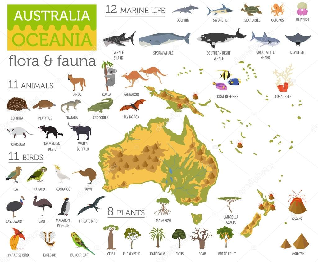 Australia and Oceania flora and fauna map, flat elements. Animal
