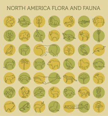 Flat North America flora and fauna  elements. Animals, birds and
