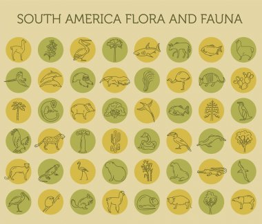 Flat South America flora and fauna  elements. Animals, birds and