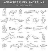 Photo Flat Antarctica flora and fauna  elements. Animals, birds and se