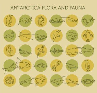 Flat Antarctica flora and fauna  elements. Animals, birds and se