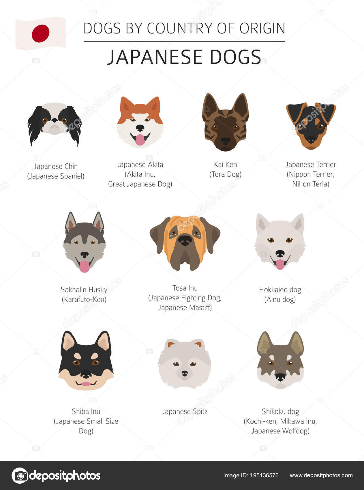 Dogs By Country Of Origin Japanese Dog Breeds Infographic Temp Stock Il Ration