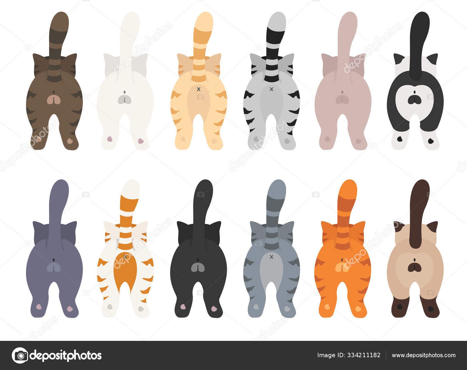 kucing berpose di belakang pantat kucing clipart desain rata stok vektor c a7880s 334211182 https id depositphotos com 334211182 stock illustration cats poses behind cats butts html