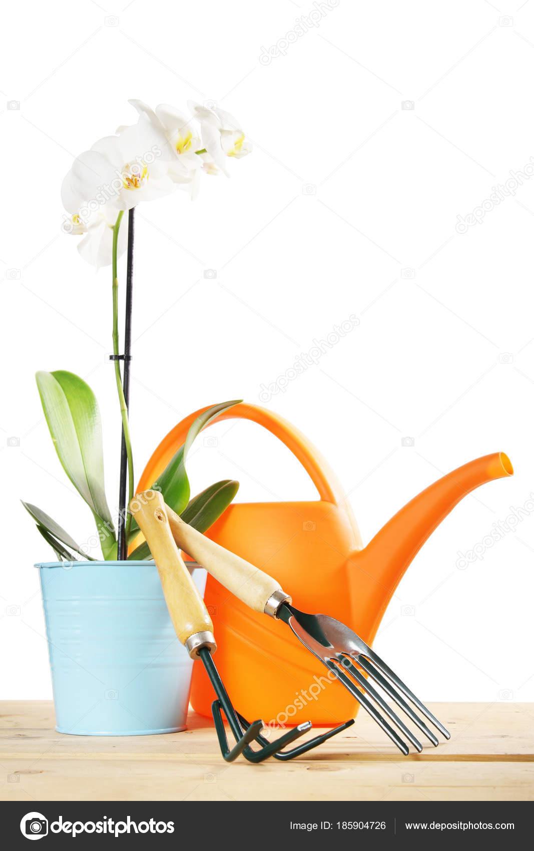 Composition de jardinage avec les outils de jardin isolé sur fond ...
