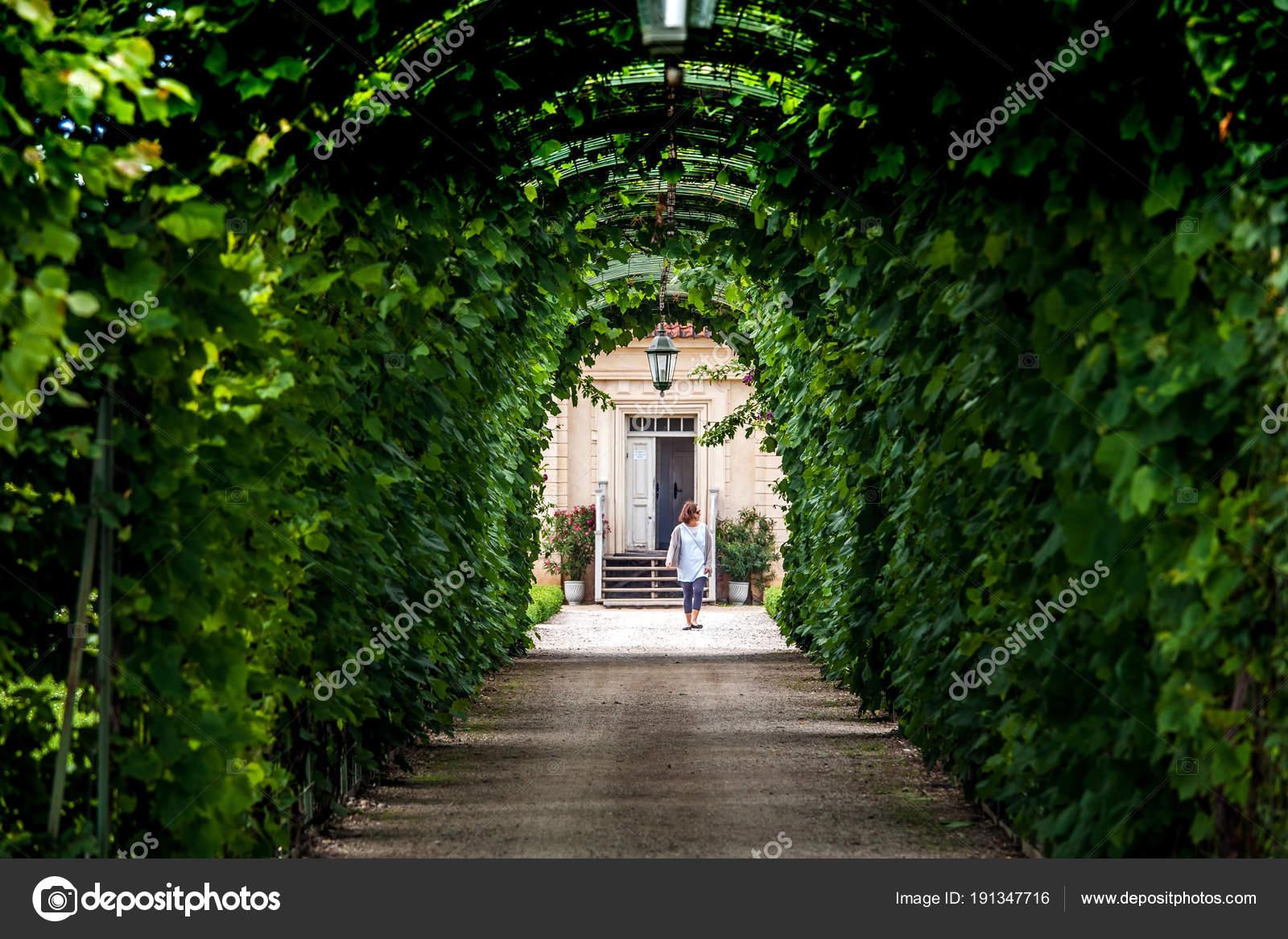 Arcos Jardineria Arcos Jardin Verdes Y Camino Diseno De - Arcos-de-jardin