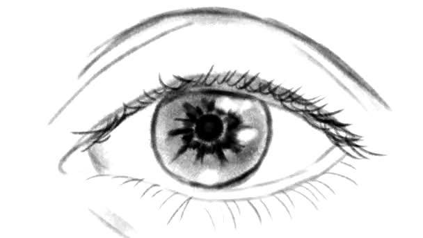 Handgezeichnete Schwarz-Weiß-Augenblinkanimation. Nahaufnahme auf weißem Hintergrund