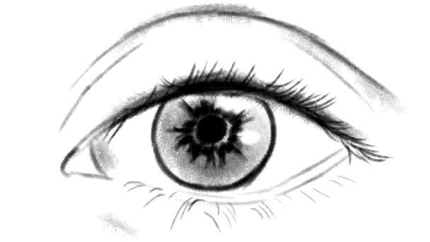 Schwarz-weiß-Animation der allmählichen Expansion und Verengung der Pupille des Auges
