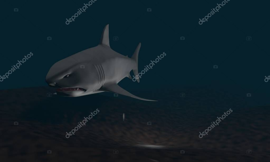 Background of shark model, 3d render