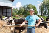 Fotografie Farmář pracuje na farmě s dojnic