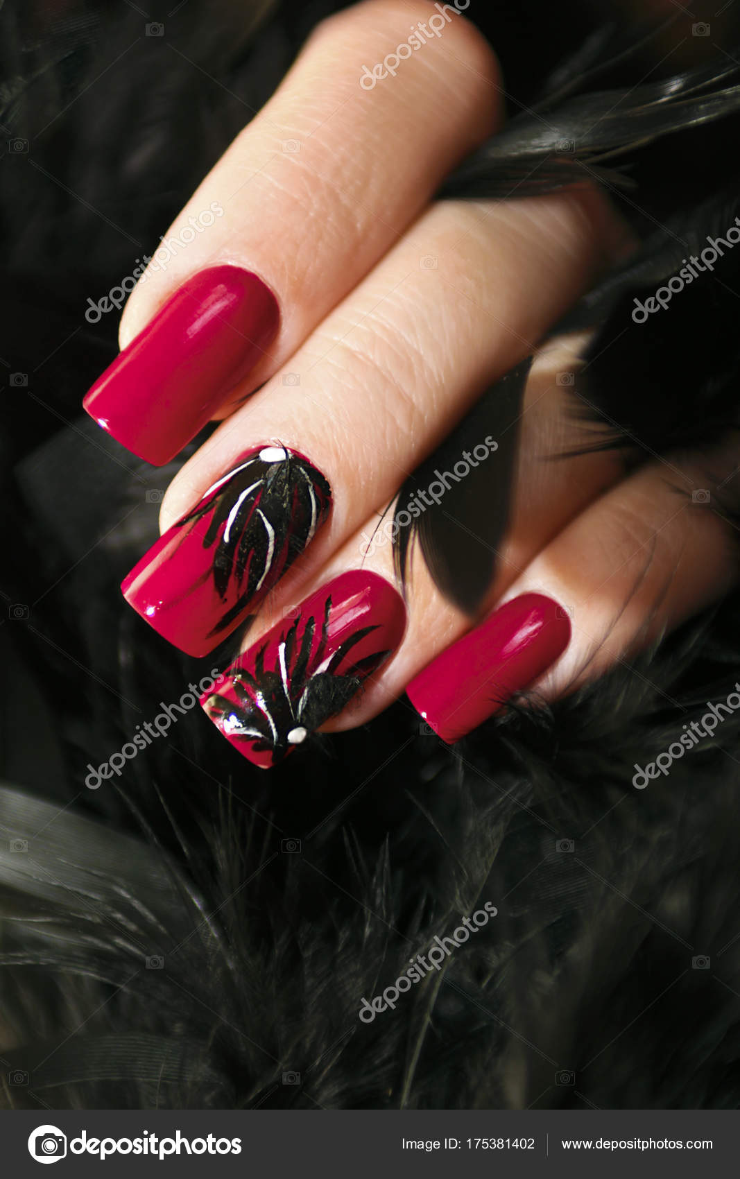 Long Red Nails Design Black Feathers Female Hand Close — Stock Photo ...